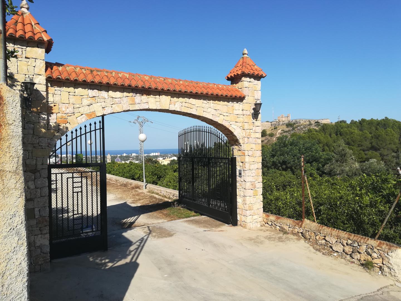 Oliva – Ref: PNVL1648
