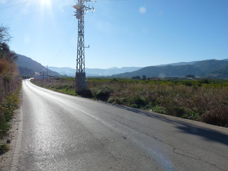 Palma de Gandia – Ref: PNPT195
